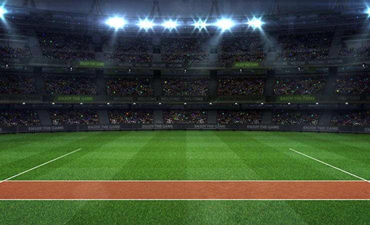 Animated image of cricket pitch within a stadium