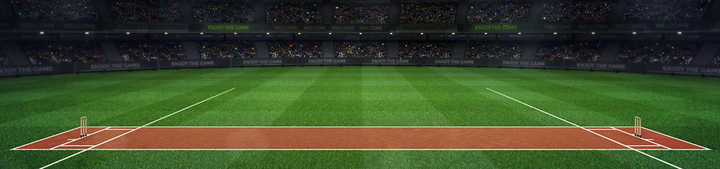 Animated image of cricket pitch within a huge stadium